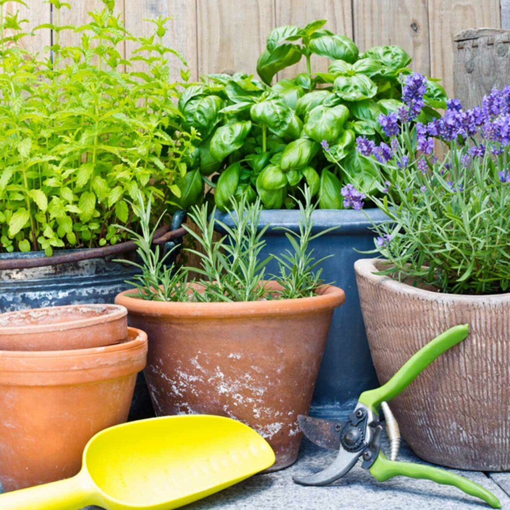 Get greenery with these styles of plants growing in your balcony which is great for balcony garden decoration