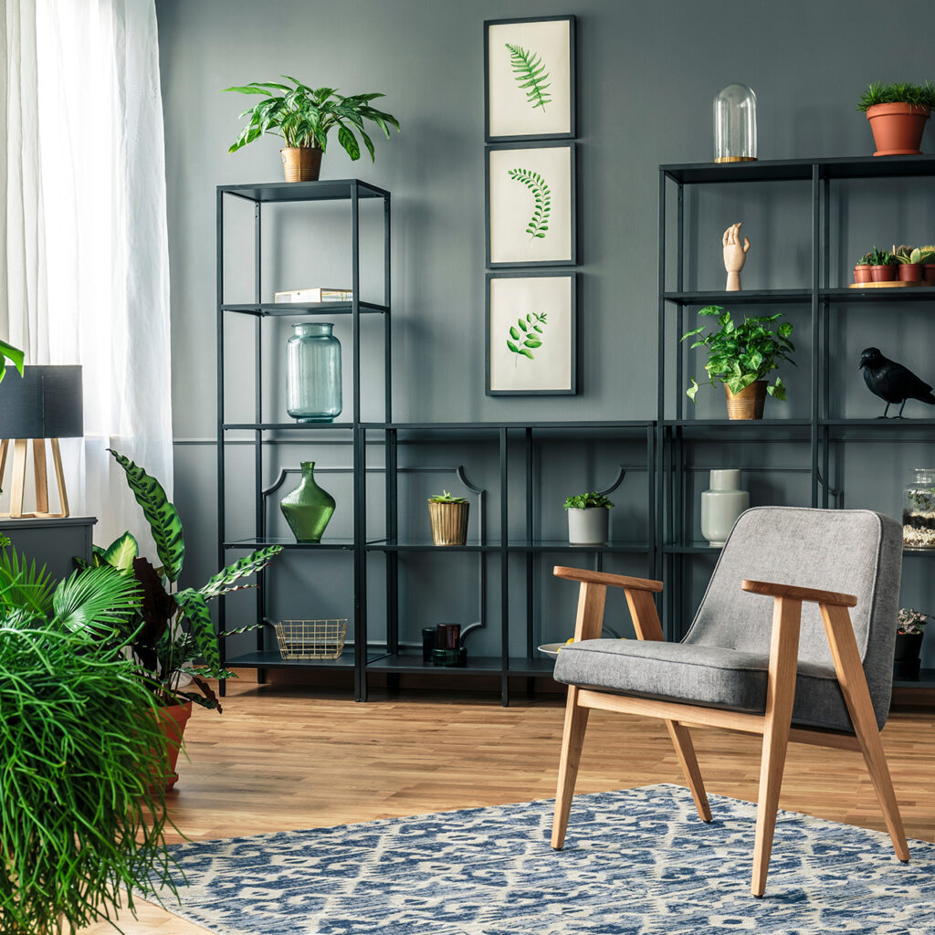 For budget friendly interior design - go green for maximum freshness and flair