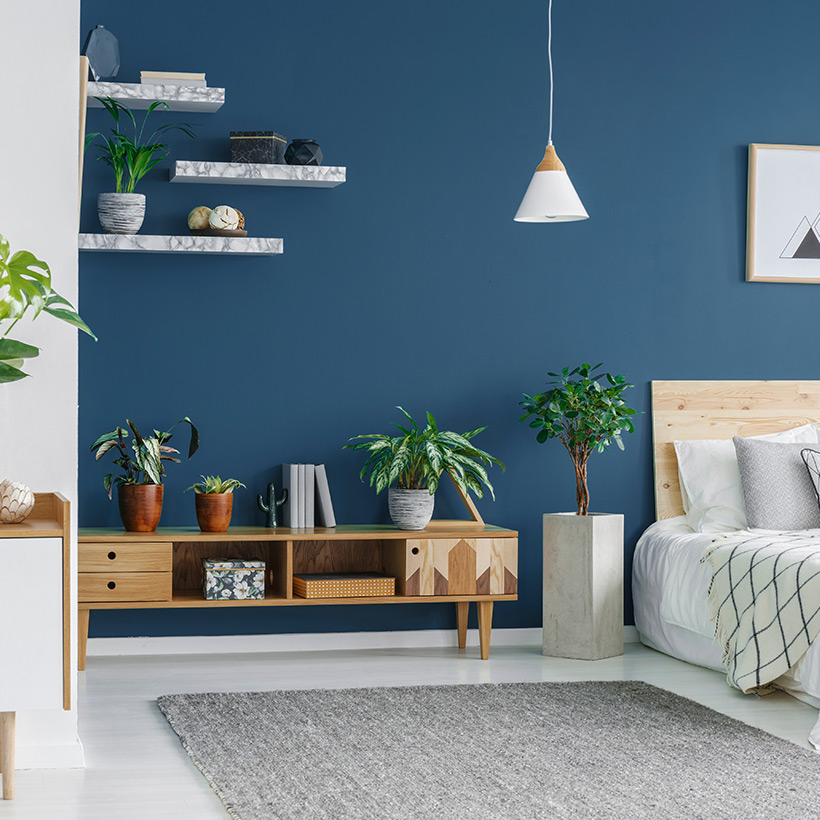 Master bedroom design with a blue coloured wall with decor with plants and shelves in small master bedroom ideas