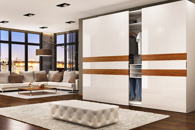 Cupboard design for hall you have a large hall interior or live in a studio apartment
