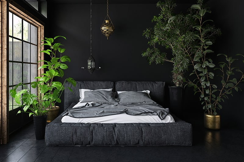 Black and white bedroom to place indoor planters to soften your black bedroom