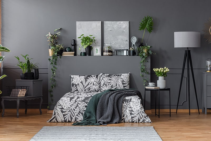 Add contrasting knick-knacks to elevate the beauty of black bedroom