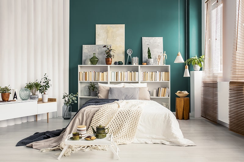 A headboard with shelves for books, small indoor plants and photographs to make stylish headboard designs