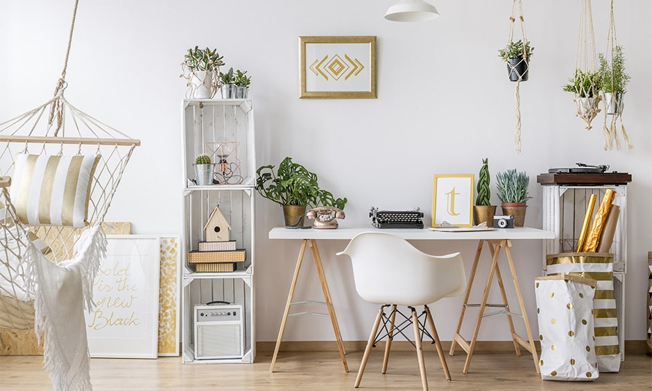 indoor hanging plants for your home  design cafe