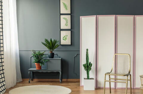 Room divider ideas for your home.