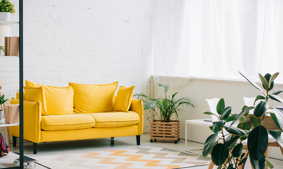 A yellow sofa and green indoor plant like bamboo till terrarium add sunshine in dark green and yellow living room.