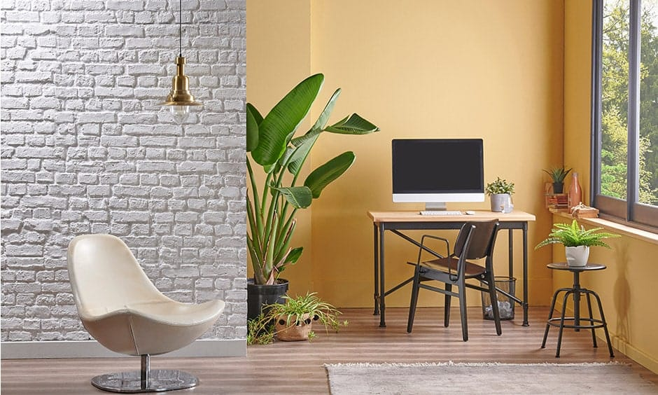 White brick wall design gives elegant texture to your walls