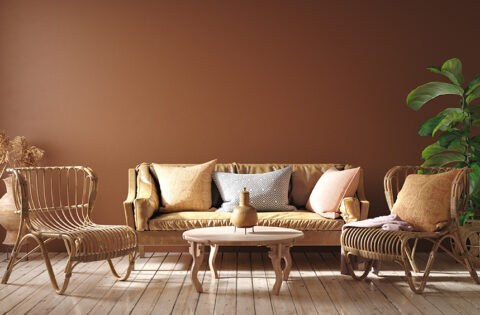 brown-colour-combination-for-your-home