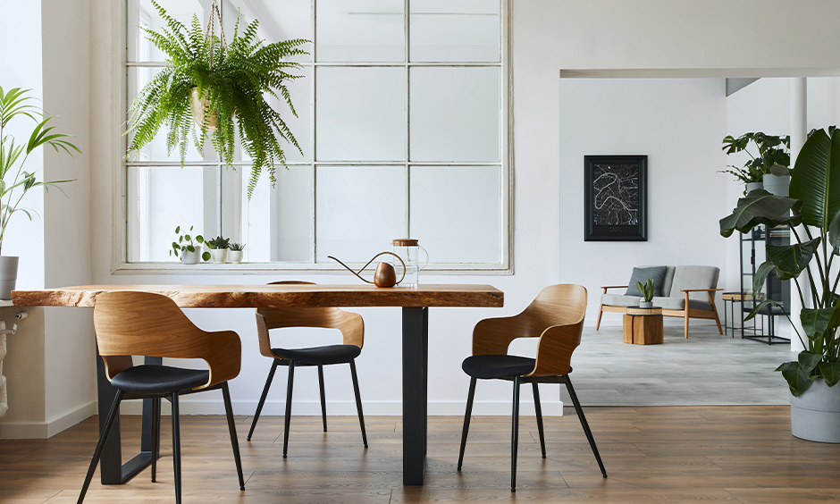 Luxury modern dining room chairs made from wood with an outstanding design brings a plush and comfy feel.
