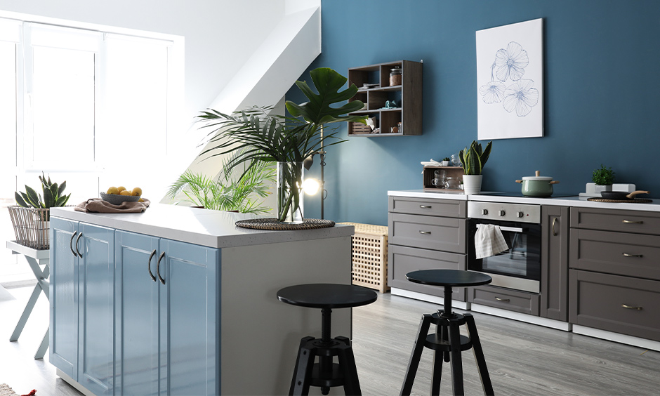 Modern kitchen colour combination in white and teak blue with indoor plants brings calmness.