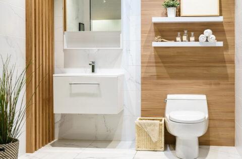 Vastu tips for your bathroom/toilet