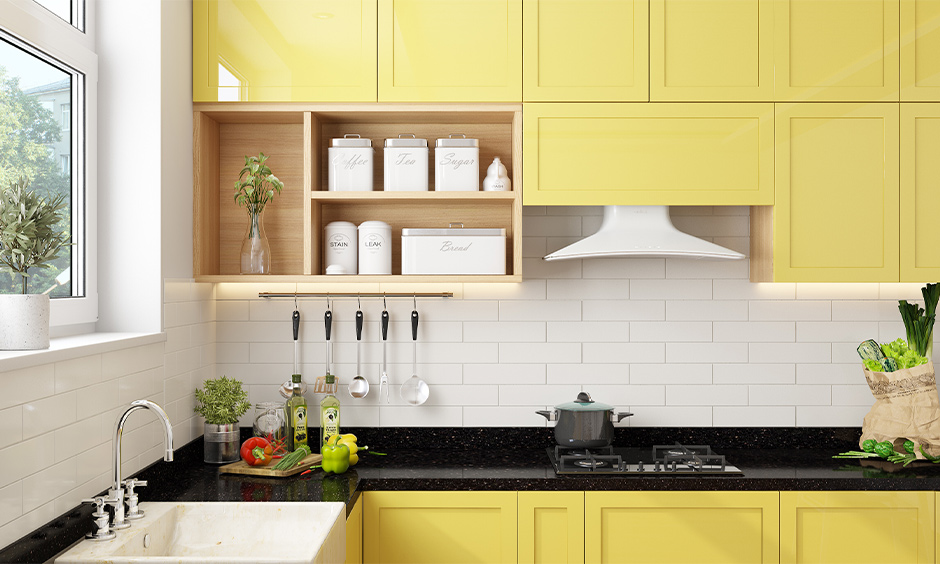 A money plant placed in the open kitchen cabinet brings fresh air is the money plant in kitchen Vastu.