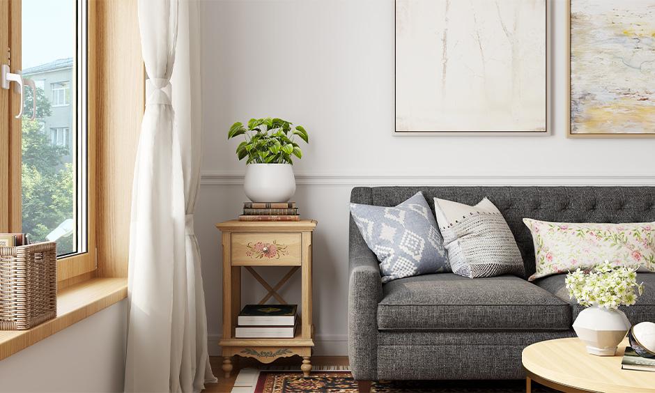 Money plant vastu for your home