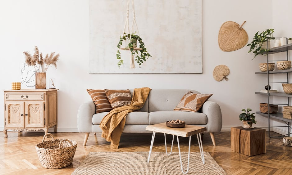 Indoor hanging plant ideas for your living room