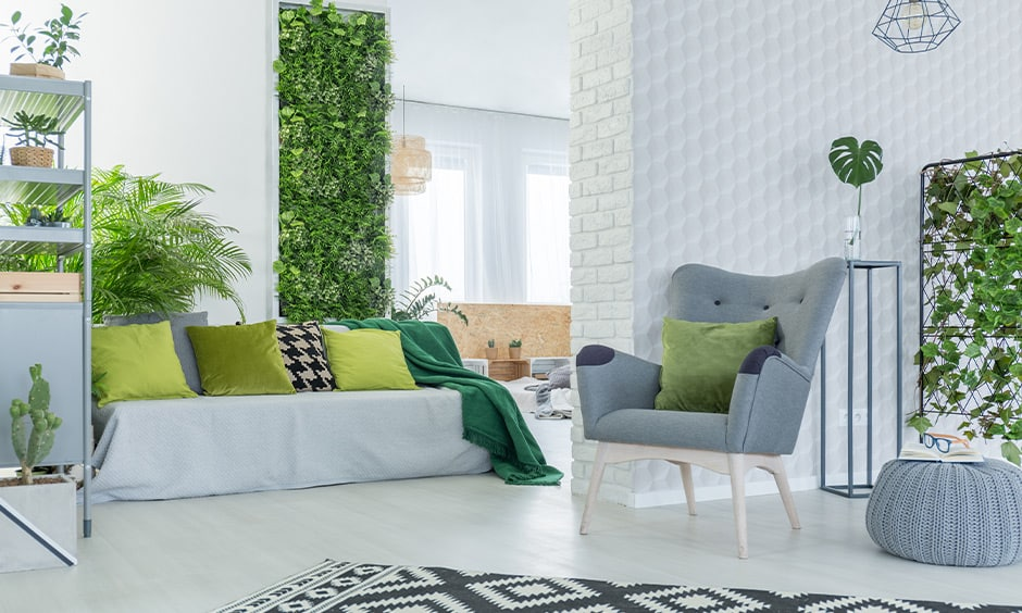 Transform your living room into an urban jungle with indoor plants