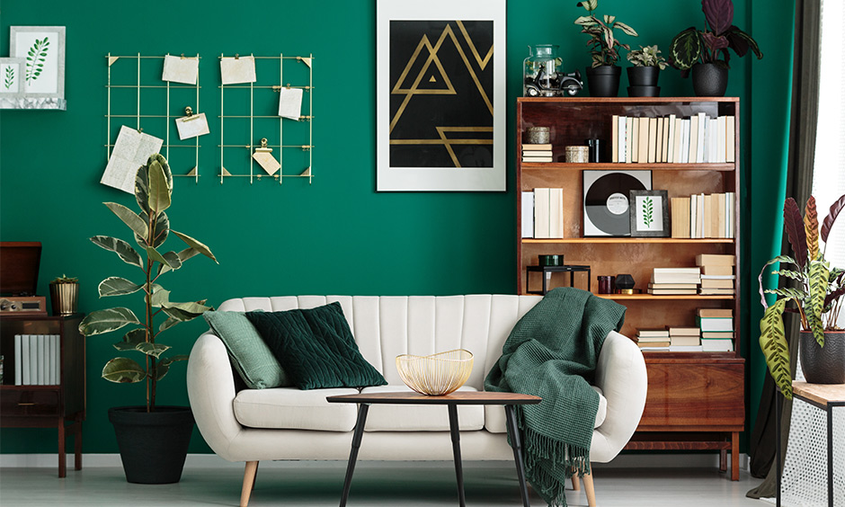 Wooden showcase design for hall against the green wall and displaying books lends a classy look.