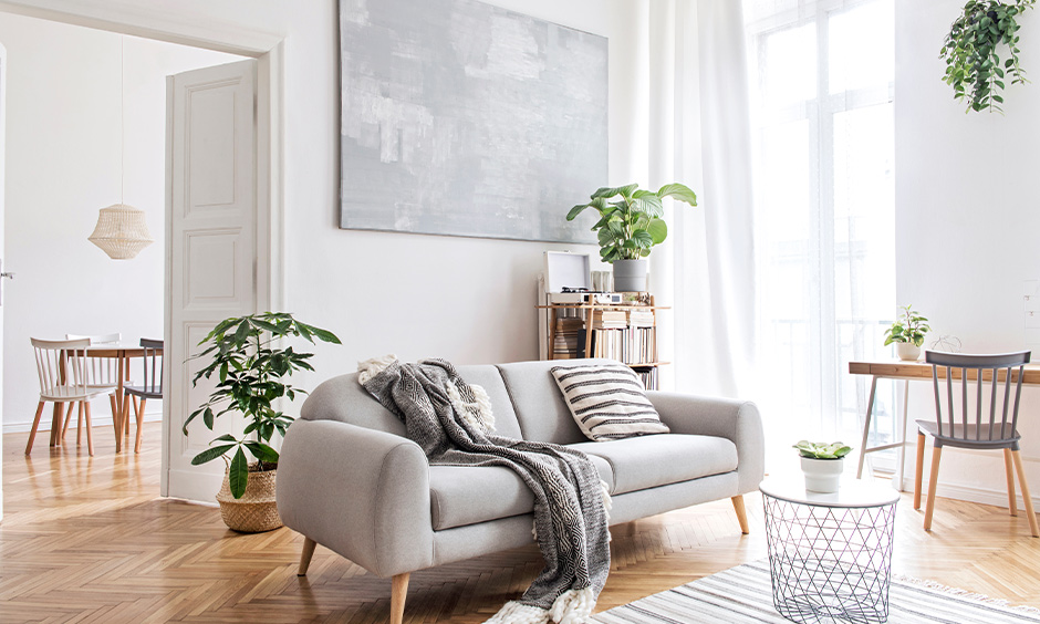 Scandinavian design living room with indoor potted plants and wooden flooring brings in a refreshing look.