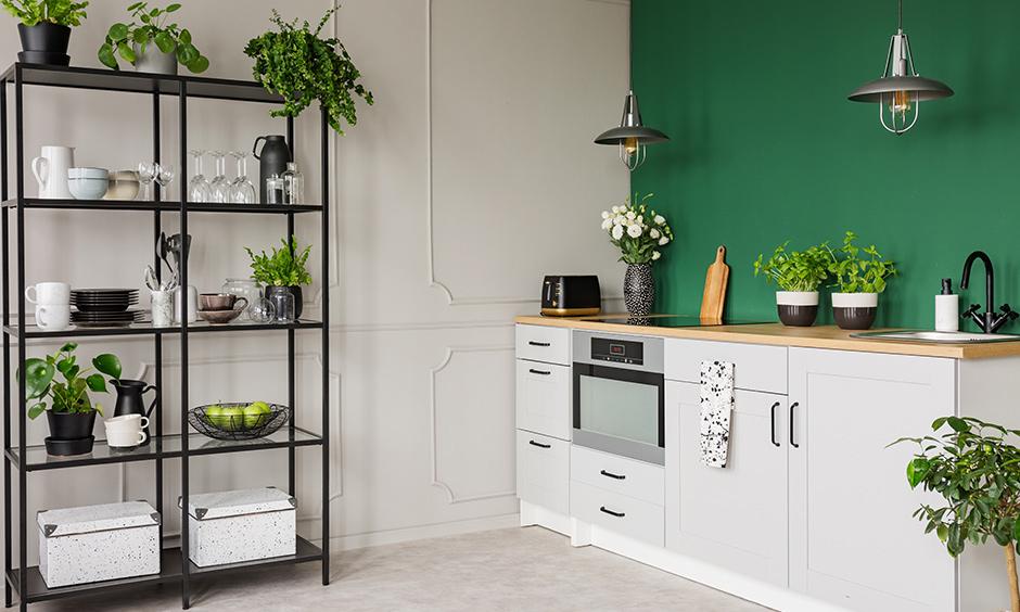 Home vegetable garden ideas